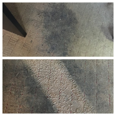 carpet cleaner manchester