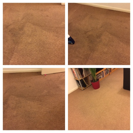 carpet cleaning salford